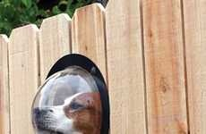 One way to give your dog a view of the neighbourhood