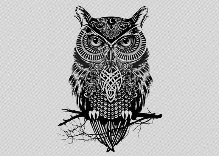 Owl Tattoos Meaning On A Man | Tattoo Design Mobile and Desktop ...