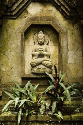 Tropische - Aziatische - Bali - Tuin - Tropical - Asian - Garden