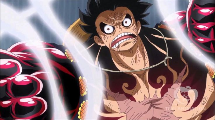 One Piece Chapter 904