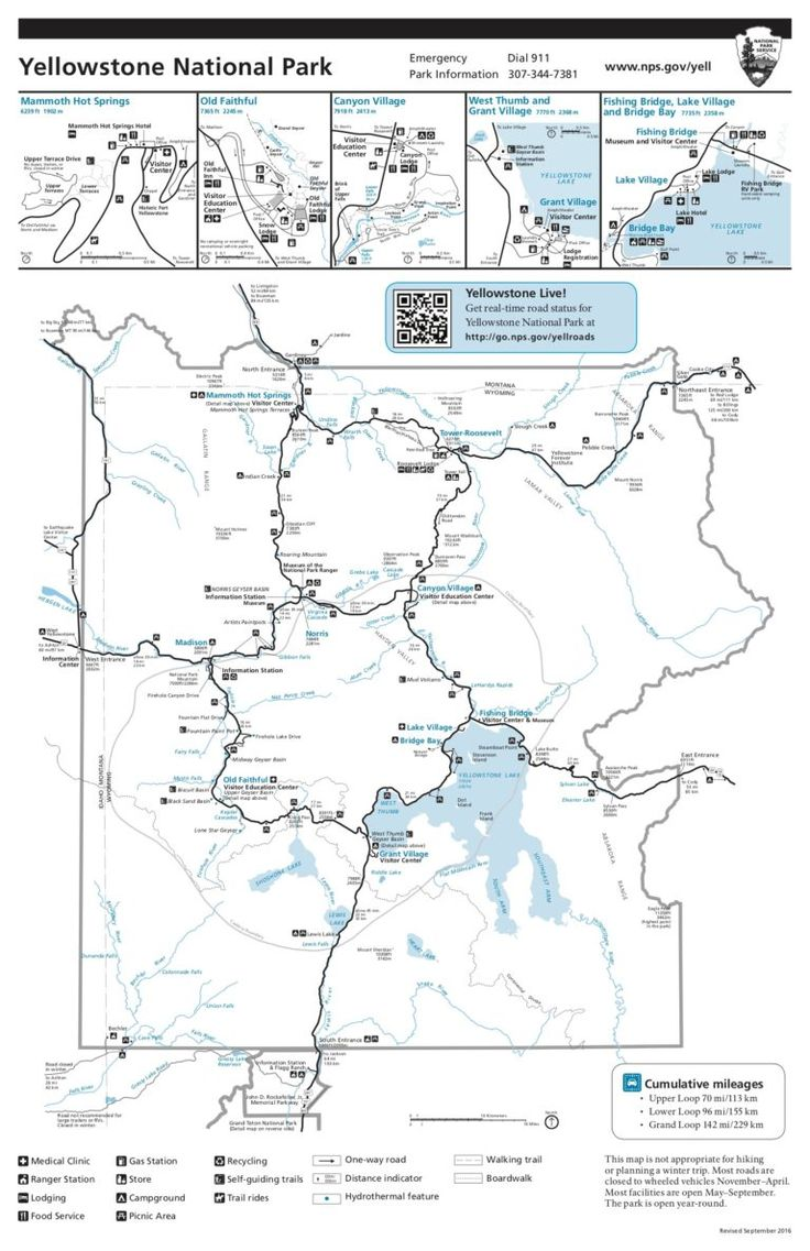 What to Know When Planning Your Yellowstone Vacation (With