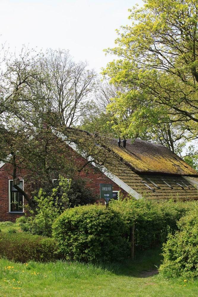 Schutsweg, Midlaren, Drenthe.