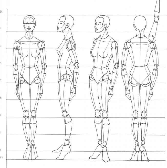 Drawing Female Body Proportions Rule of <b>proportion</b> the human <b>body</b> - <b>figure drawing</b> - martel ...