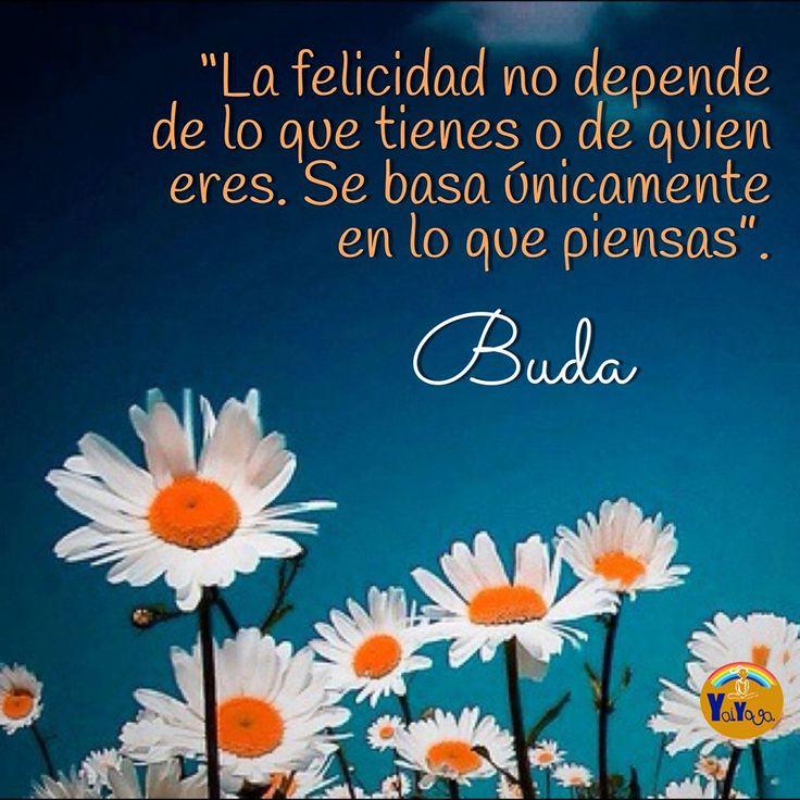 La felicidad no depende de lo que tienes o de quien eres. Se basa únicamente en lo que piensas. Buda