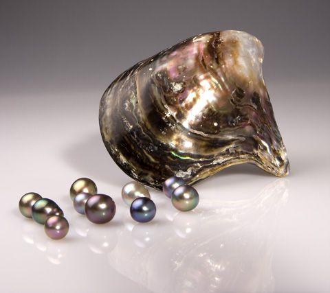 La Concha Nácar y sus Perlas