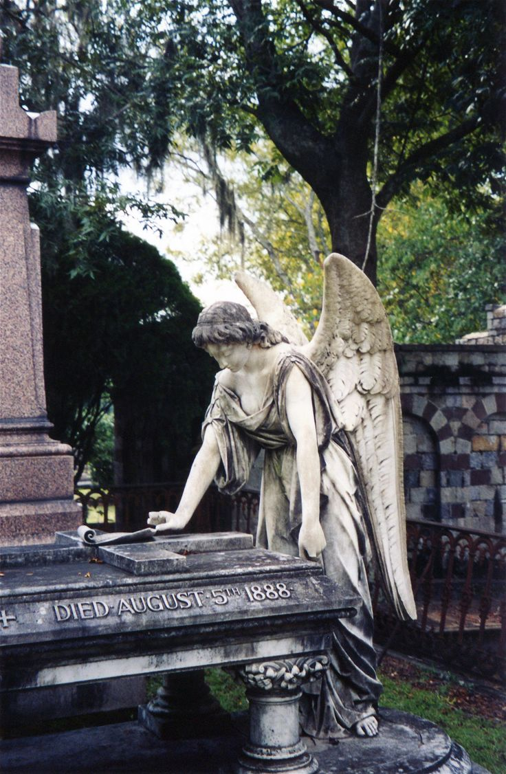 Who knew a gravesite could be so beautiful. Savannah, Ga.