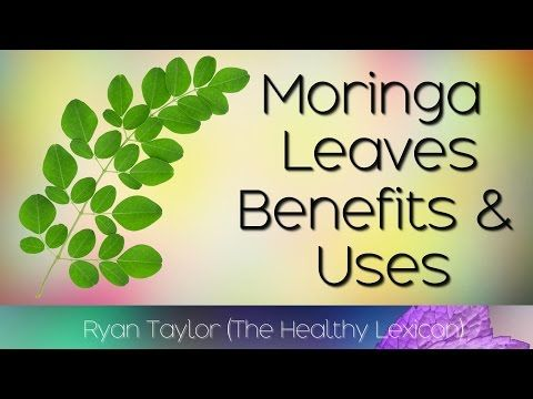 Moringa Leaves: Benefits and Uses (Drumstick Leaves) - YouTube
