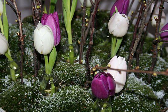 Bloesemtakken bloemstuk zelf maken - bloemschikken met bloesemtakken en tulpen tijdens de winter