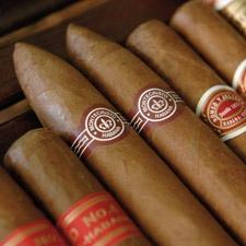 Havana Cigar Shops