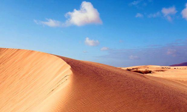 alquileres coches Fuerteventura