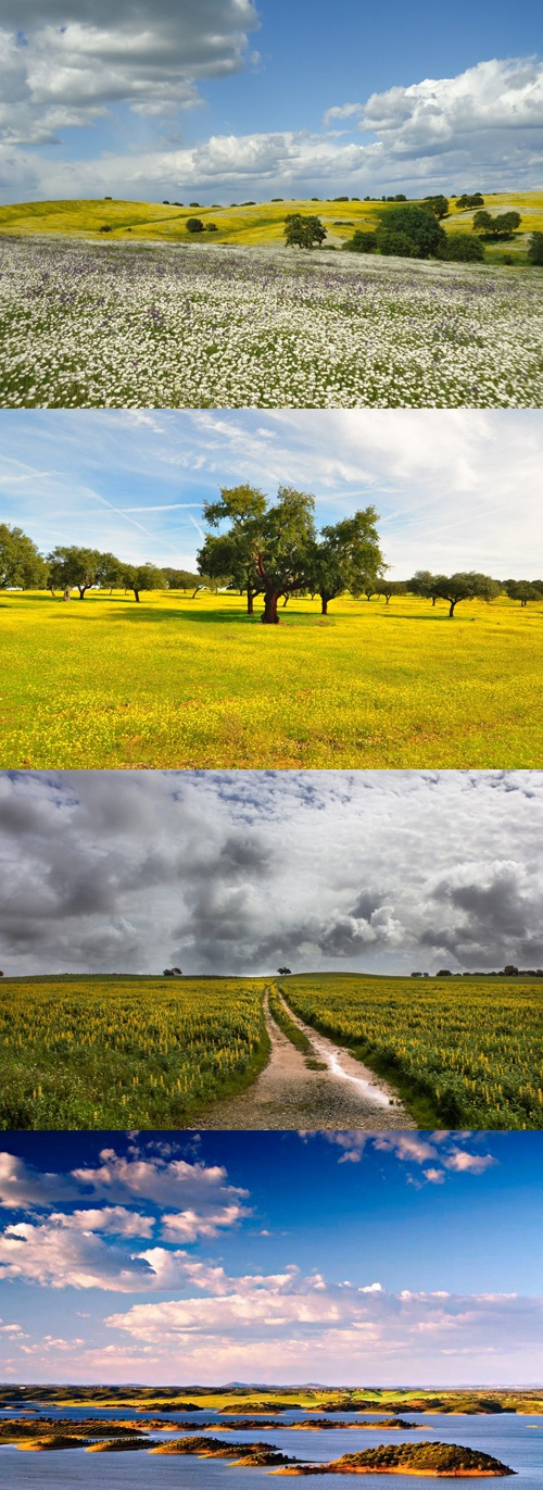 in alentejo a wonderful climate summer is really warm but at night the
