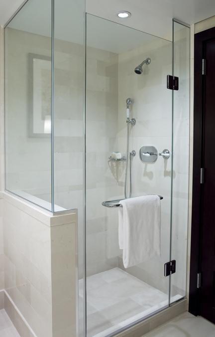Bathroom Remodel - Shower Door and Half Wall
