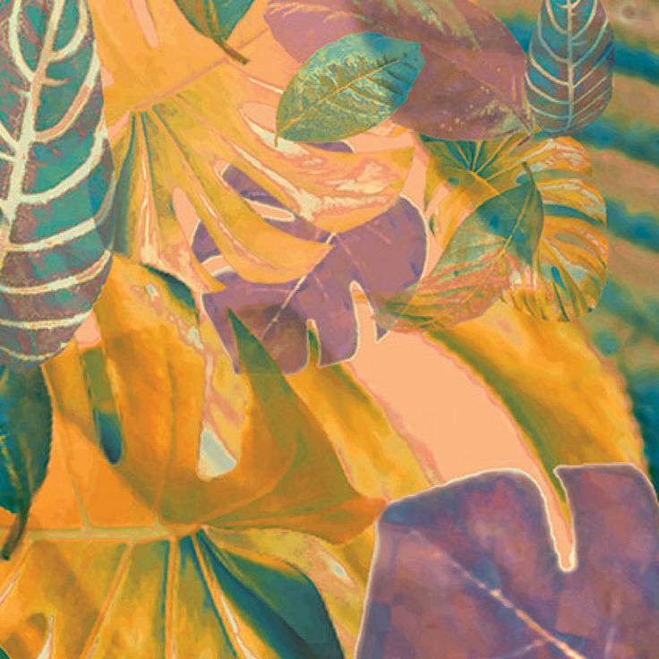 colorful leaves from tropical plants that look like dancing in the air - detail
