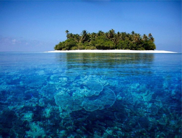 Maldives 30 Stunning Beaches & Lakes With The Most Crystal Clear Waters In The World • Page 3 of 6 • BoredBug