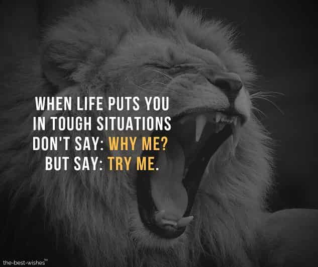 Best Motivational Quotes Images To Achieve Success In Life Why Quotes Best Motivational Quotes Motivational Quotes