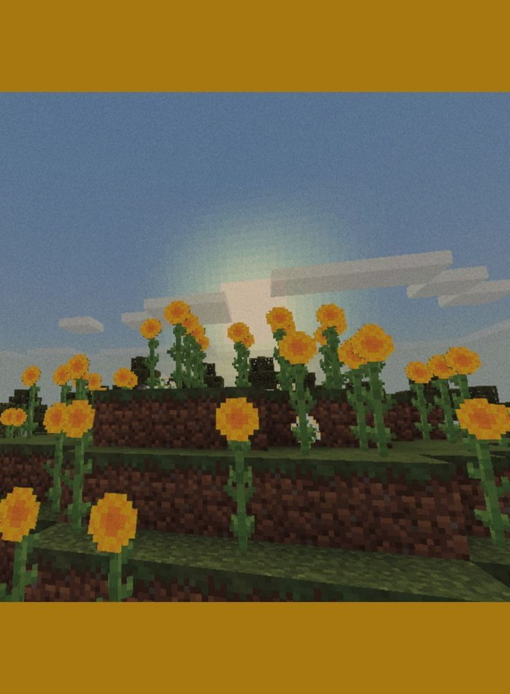 Atardecer With Images Minecraft Pictures Minecraft Wallpaper