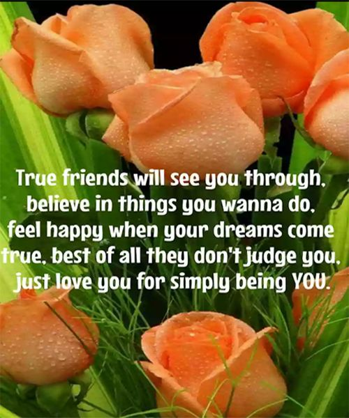Just love you-friendship quotes