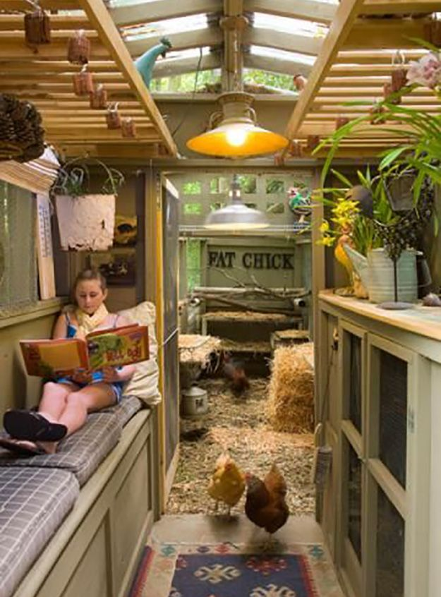 Book & Cluck Nook | Chicken and Poultry | Chicken Houses and Poultry Farms on the Homestead at pioneersettler.com