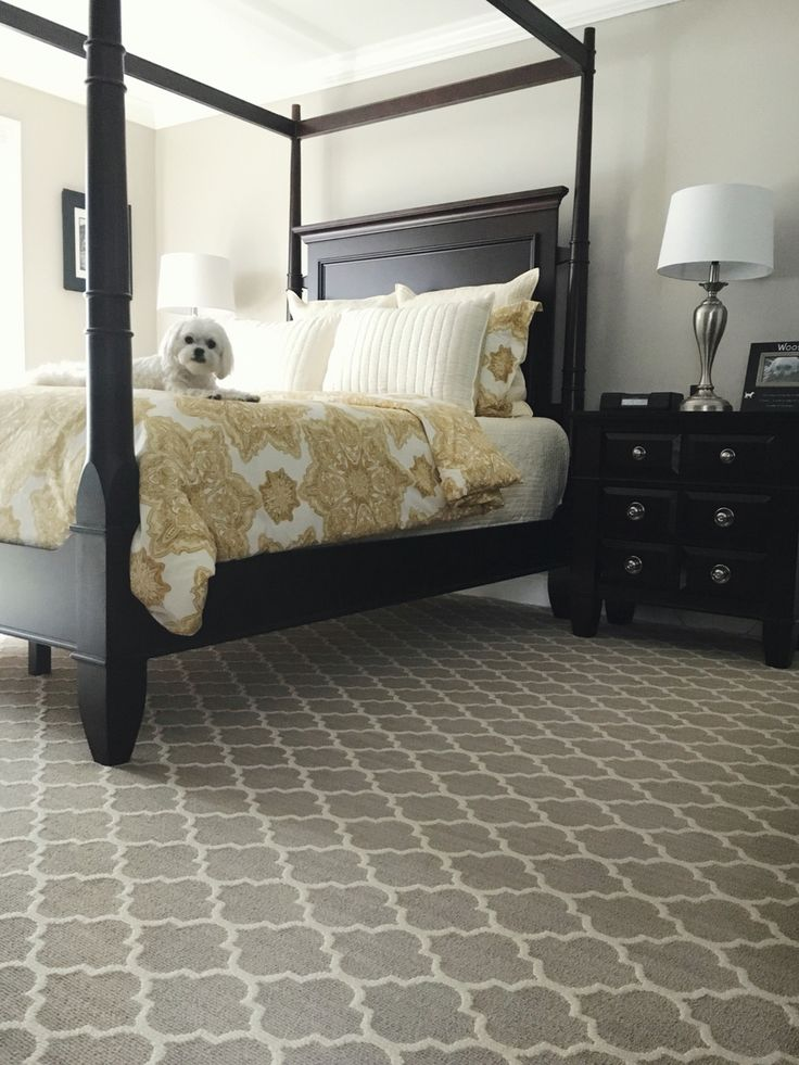 Master Bedroom featuring Tuftex Carpet by Shaw Floors . . . and my Sam. ❤️  Style: Taza  Color: Plaza Taupe  Dog: Sam the Maltese  IG - mysambo