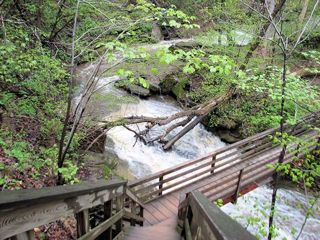 Clifty Falls State Park – Madison | Campsite Ideas Every Families Should Visit | http://survivallife.com/best-campgrounds-in-indiana/