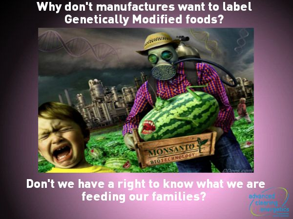 Every parent needs to read my free ebook about GM foods. You need to make a informed choice about what you are feeding your family. Get your free downloadable copy now www.advancedclearingenergetics.com/gmo
