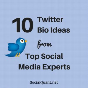 10 Twitter Bio Ideas From Top Social Media Experts - Social Quant - Twitter Growth Done Right
