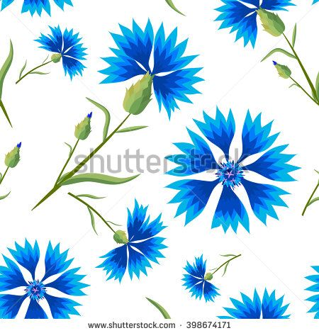 Blue summer flowers on a white background. Vector illustration with cornflowers. floral seamless pattern.
