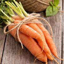 10 Best Carrot Recipes  - NDTV
