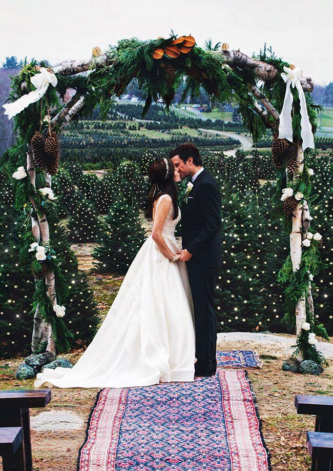 Weihnachtsbaum Plantage Hochzeit Ceremony Backdrop