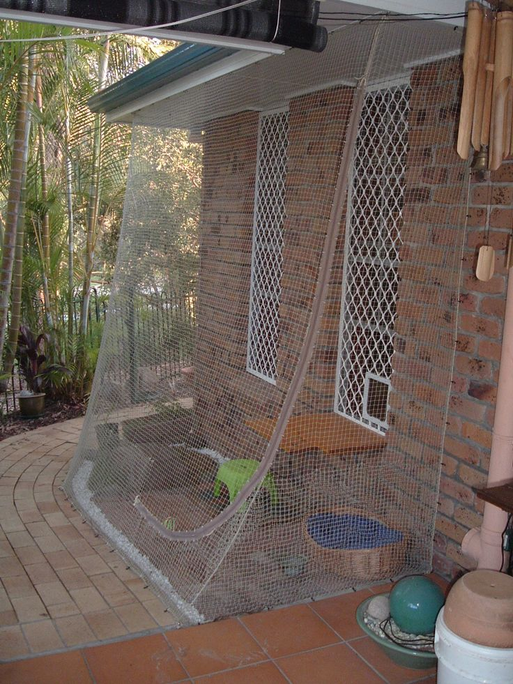 They chose CatSafe to supply them with an inexpensive individual cat enclosure to suit their needs. Description from catsafe.com.au. I searched for this on bing.com/images
