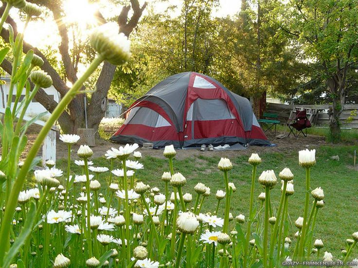 Spring Camping Tips on the Pelican blog
