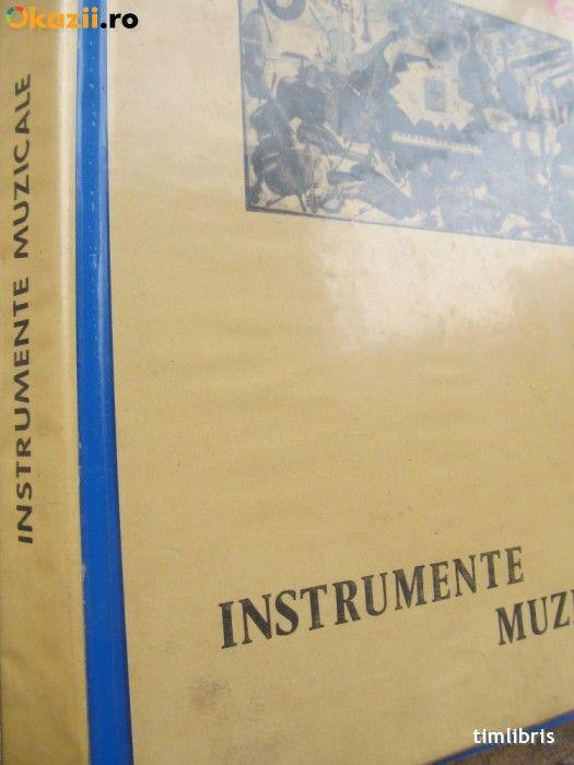 Instrumente muzicale (79 diapozitive) foto mare