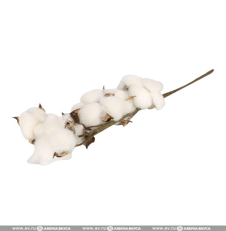 Ветка Edelman Хлопок белый Edelman B.V. 1шт Нидерланды 45см | Азбука Вкуса — Интернет-магазин продуктов и товаров для дома с доставкой