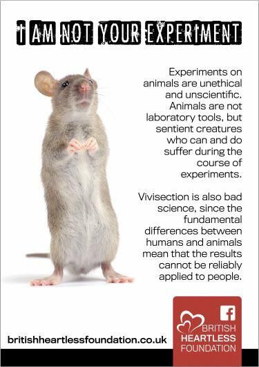 Just as important to end as factory farms. Animal testing is sadistic, immoral and must be abolished.