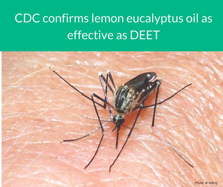 According to the CDC, lemon eucalyptus oil could be a much safer and more natural weapon than DEET. https://www.treehugger.com/lawn-garden/cdc-confirms-lemon-eucalyptus-oil-as-effective-as-deet.html  #mosquitoerepellent #lemoneucalyptusoil #CDC #DEET #AromatherapyProducts