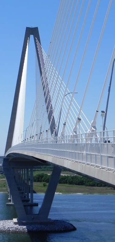 48 Best The Bridge Images On Pinterest Bridges Charleston South Carolina And River