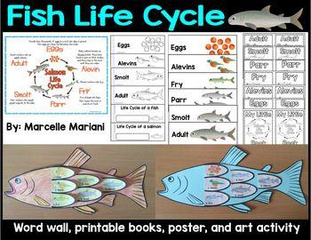 Fish Life Cycle Art Activity, word wall, posters and print