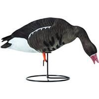 Tanglefree Pro Series 6-Pc. Specklebelly Full Body Goose Decoy Set: Tanglefree Pro Series 6-Pc.… #Hunting #Shooting #Fishing #Camping