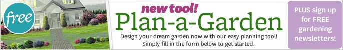 Welcome to Plan-a-Garden...if you are not willing to put out any $$ for software to plan your garden, this is a pretty nice online tool.