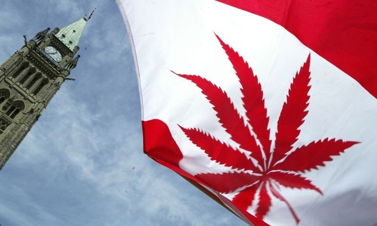 Canada Ready to Legalise Weed, Renounce Religion and Reduce Guns http://www.toomanly.com/6259/canada-ready-to-legalise-weed-renounce-religion-and-reduce-guns/ #OhCanada #Canada #Weed #Marijuana