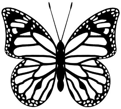Butterfly! #design made bij www.styleyes.nl