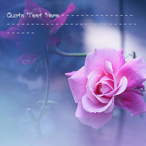 Get your name in beautiful style on Beautiful Pink Flower picture. You can write your name on beautiful collection of Quotes pics. Personalize your name in a simple fast way. You will really enjoy it.