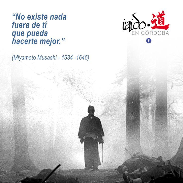 """""""No existe nada fuera de tí que pueda hacerte mejor"""" (Miyamoto Musashi)"""