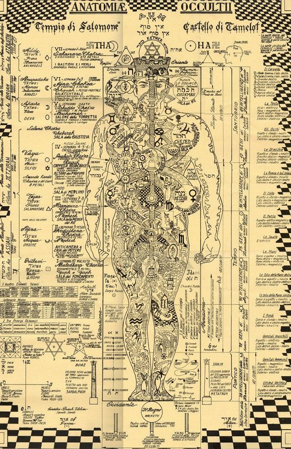 The Occult Anatomy Print Kabbalah Alchemy by TheOccultAnatomy