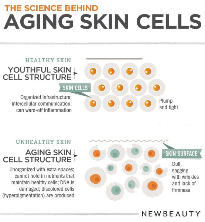 Skin Care Infographic: 46 Best Science. Images On Pinterest
