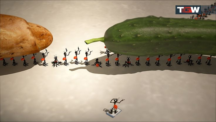 film animation for TGW Group by SKYFORM