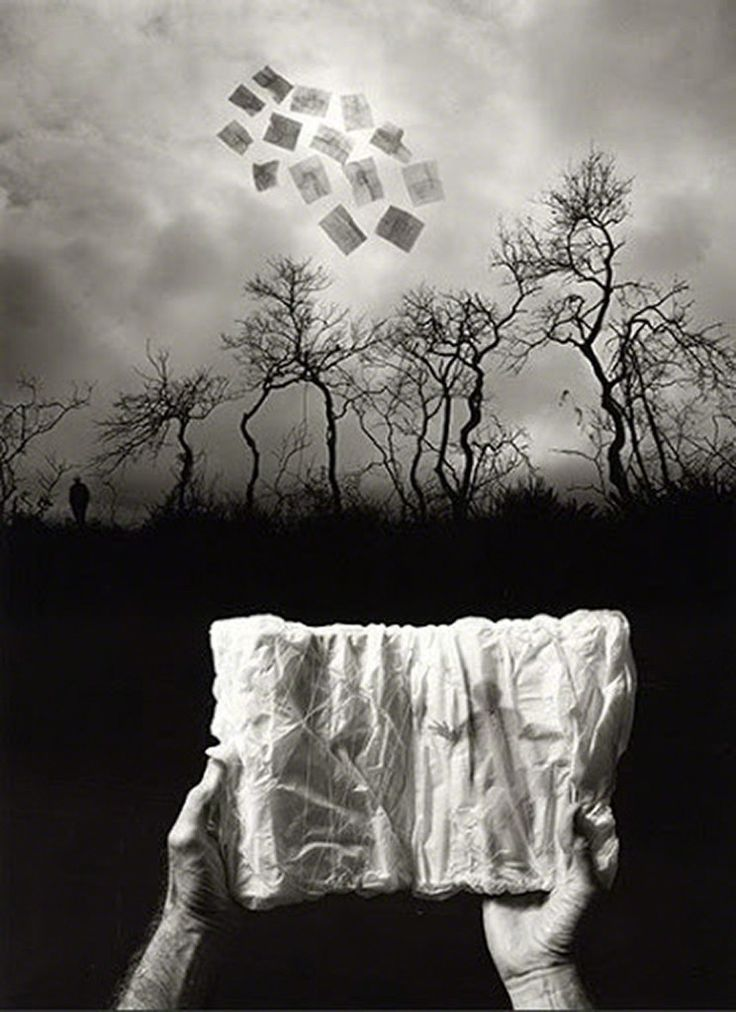 Jerry Uelsmann, Elusive Journal, 2009, Sylvia White Gallery