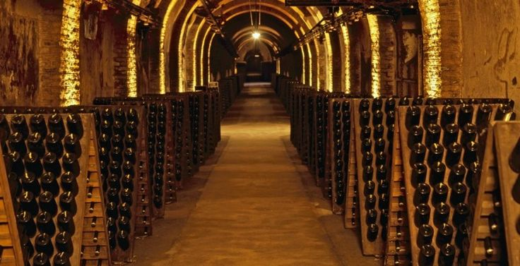 53 best images about champagne cellars on pinterest for Cost to build a wine cellar