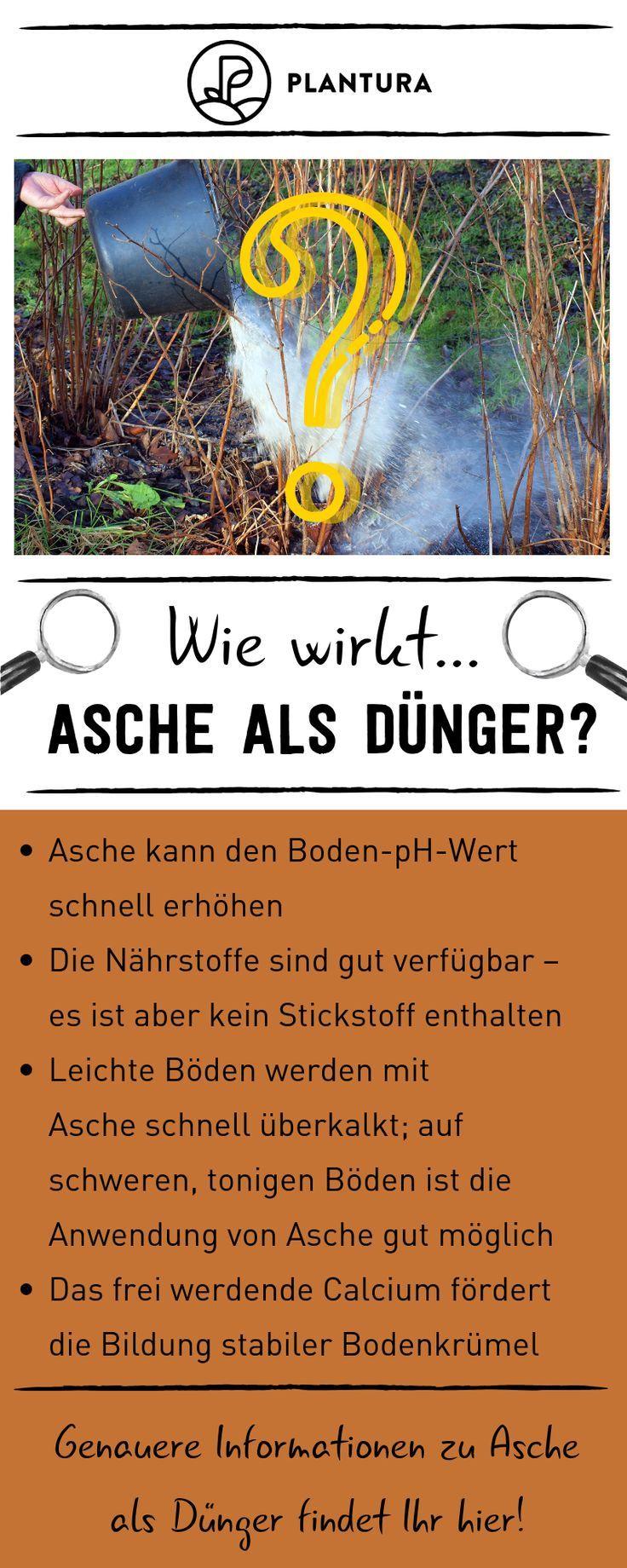 Garten Gardening Duenger Aschealsduenger Wie Wirkt Asche Wie Wirkt Asche Als Dunger Wir Erklaren Wie Asche Als Naturlicher Dunger Wirkt Und Wie M