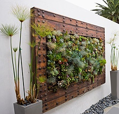 22 best images about vertical gardens planters on pinterest gardens vintage style and planters - Wall mounted planters outdoor ...